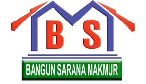 bsm_logo_transparent